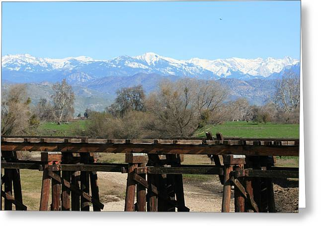 Marsha Ingrao Greeting Cards - Tracks Across Kaweah River Greeting Card by Marsha Ingrao