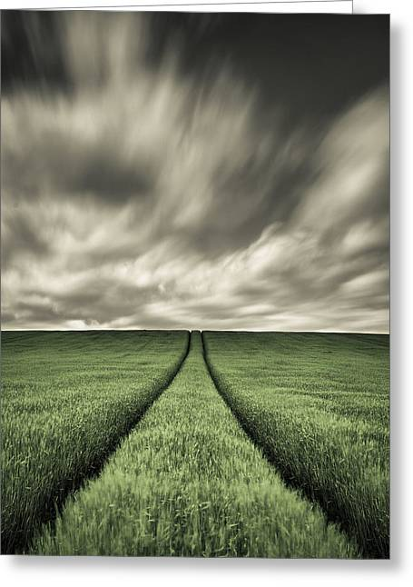 Farm Photography Greeting Cards - Tracks Greeting Card by Dave Bowman