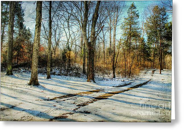 Snow Covered Ground Greeting Cards - Tracks in the Snow Greeting Card by Darren Fisher