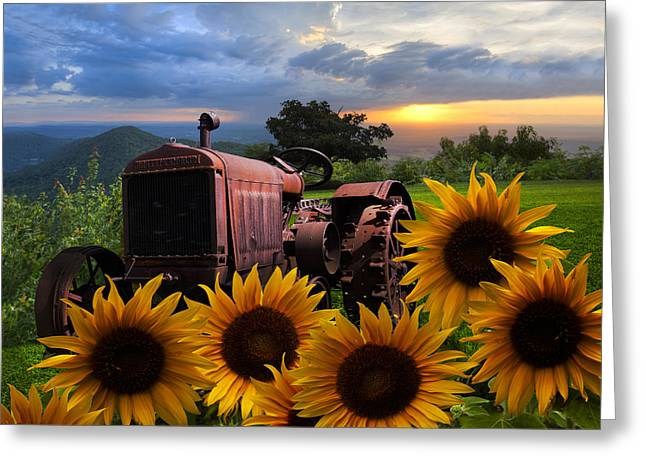 Appalachia Greeting Cards - Tractor Heaven Greeting Card by Debra and Dave Vanderlaan