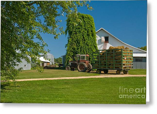 Hay Bales Greeting Cards - Tractor Loading Hay Greeting Card by Richard and Ellen Thane
