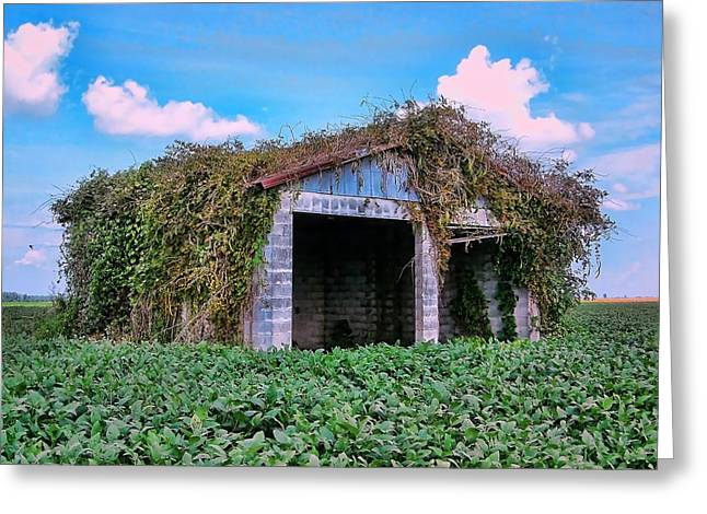 Tractor Shack Greeting Card by Victor Montgomery