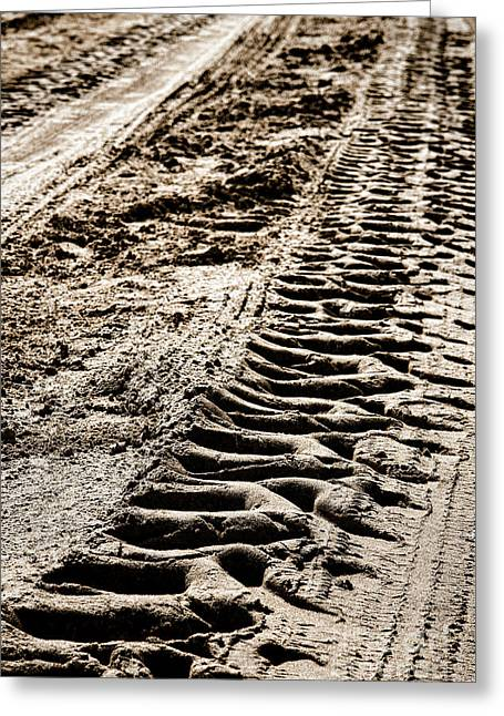 Imprint Greeting Cards - Tractor Tracks in Dry Mud Greeting Card by Olivier Le Queinec