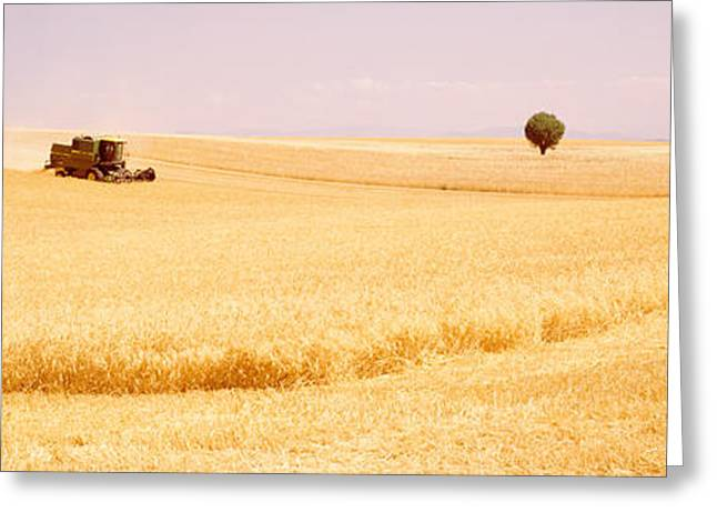Tractor, Wheat Field, Plateau De Greeting Card by Panoramic Images