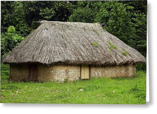 Traditional Fijian House With Thatched Greeting Card by David Wall