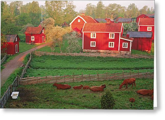 Medium Group Of Animals Greeting Cards - Traditional Red Farm Houses And Barns Greeting Card by Panoramic Images