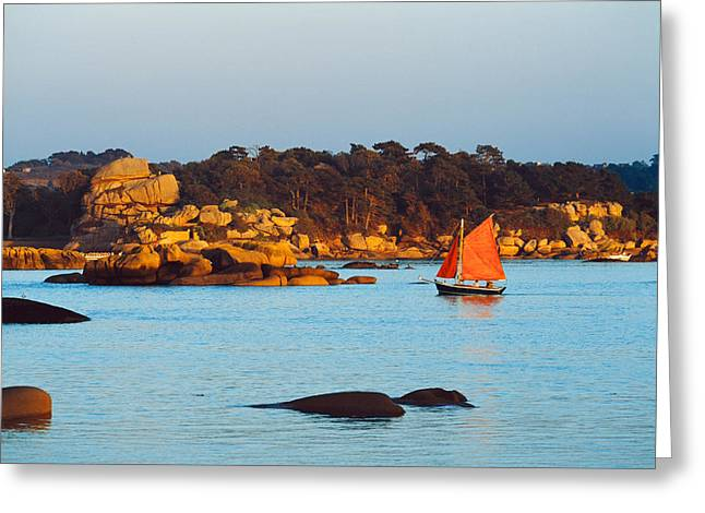 Masts Greeting Cards - Traditional Sailing Boat In An Ocean Greeting Card by Panoramic Images