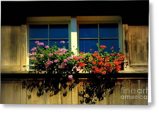 Red Geraniums Greeting Cards - Traditions live on in Switzerland Greeting Card by Susanne Van Hulst