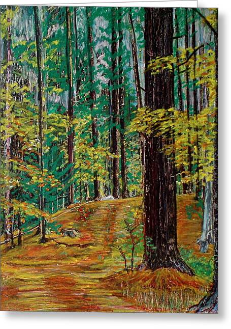 New Pastels Greeting Cards - Trail At Wason Pond Greeting Card by Sean Connolly