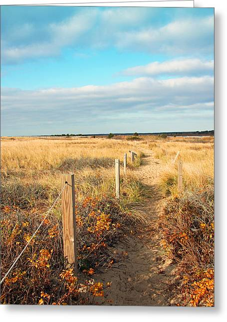 Trail By The Sea Greeting Card by Brooke Ryan