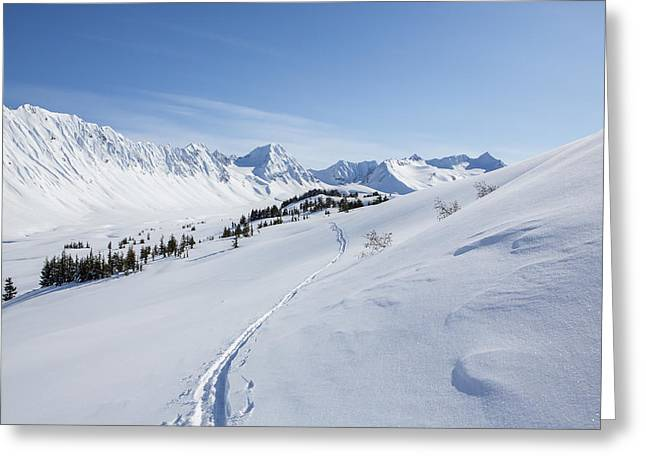 Skiing Print Greeting Cards - Trail into the Valley Greeting Card by Tim Grams