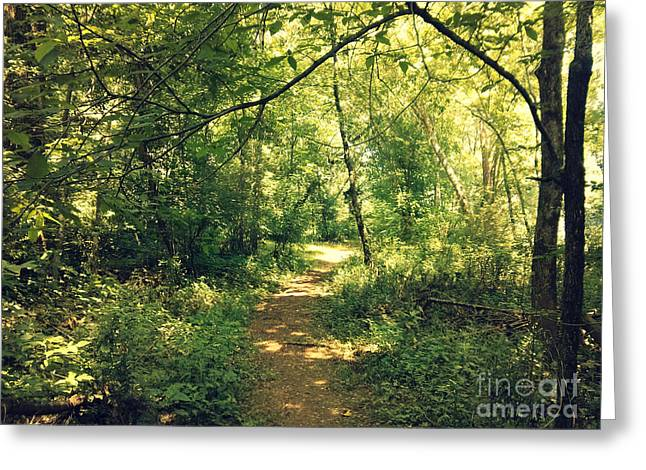Rill Greeting Cards - Trail of Hope II Greeting Card by Patricia Awapara
