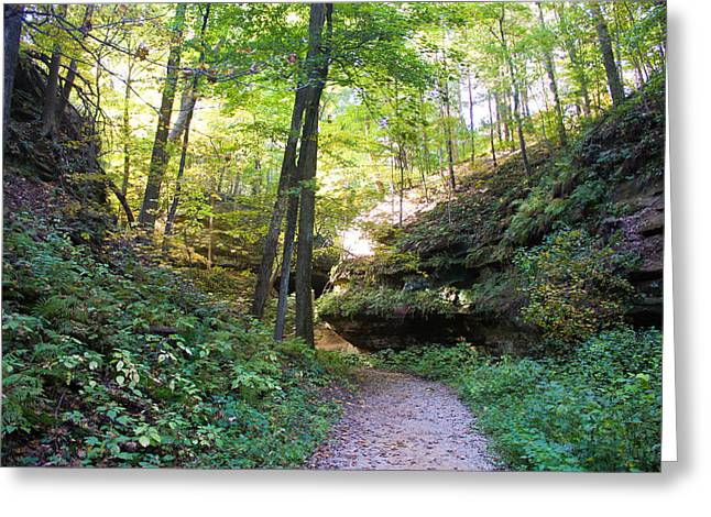 Devils Den Greeting Cards - Trail to Devils Punch Bowl Wildcat Den Greeting Card by Cynthia Woods