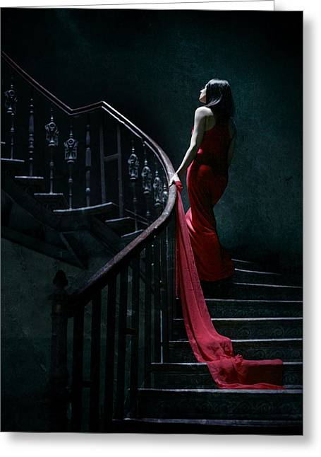Red Dress Greeting Cards - Trail Greeting Card by Wojciech Zwolinski