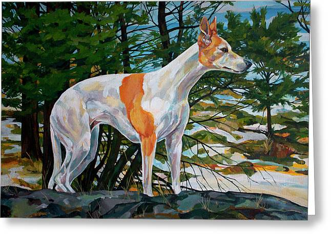 Whippet Greeting Cards - Trailblazer Greeting Card by Derrick Higgins