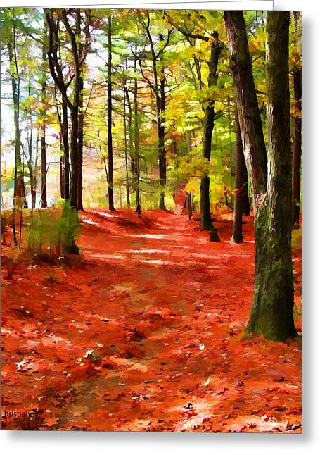 Walden Pond Greeting Cards - Trails at Walden Pond Greeting Card by Tom Christiano