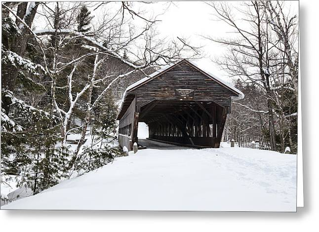 North Conway Greeting Cards - Trails End Greeting Card by Eric Gendron