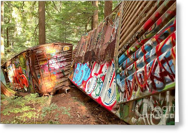 Candian Greeting Cards - Train Box Cars In The Woods Greeting Card by Adam Jewell