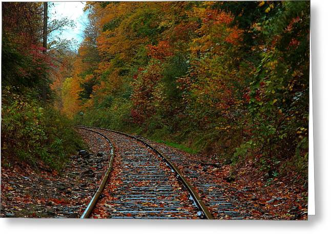 Fall Scenes Greeting Cards - Train Fall Greeting Card by Andrea Galiffi