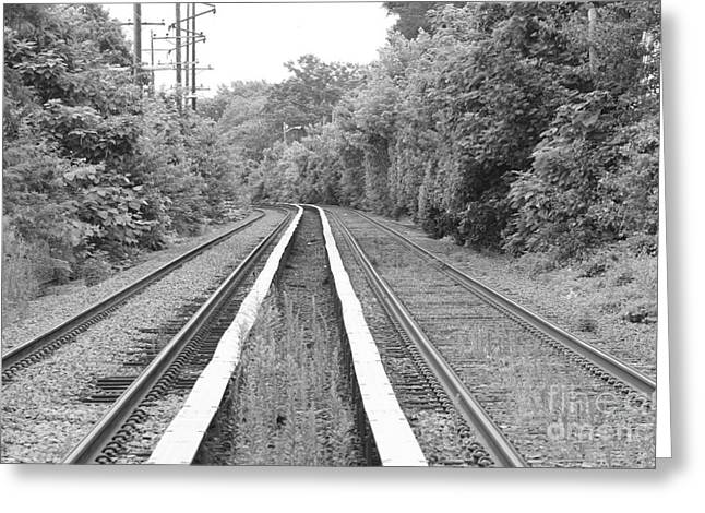 Black And White Train Track Prints Greeting Cards - Train Tracks Running Through The Forest Greeting Card by John Telfer