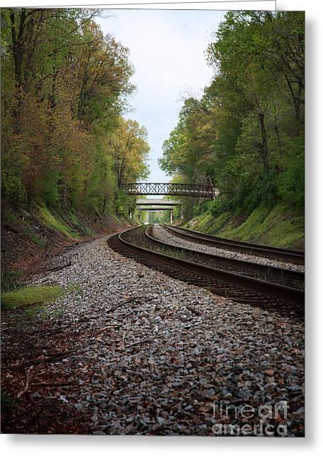 Suzi Nelson Greeting Cards - Train Tracks Greeting Card by Suzi Nelson