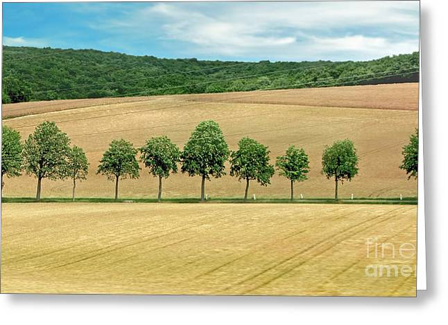 Tuscan Traditions Greeting Cards - Train with a View Greeting Card by Jennie Breeze