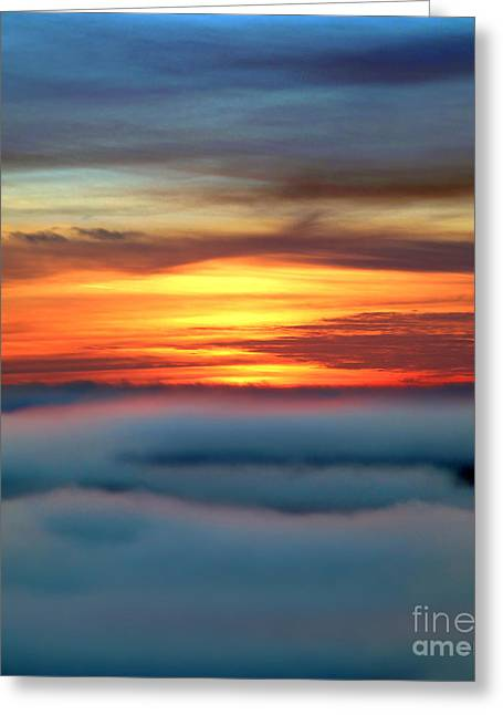 Marin County Greeting Cards - Tranquil Bodega Fog Sonoma County California Greeting Card by Wernher Krutein