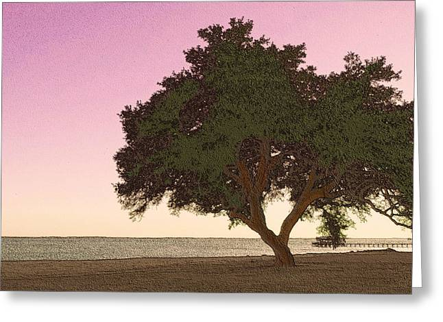 Interior Scene Greeting Cards - Tranquil Florida Bay Greeting Card by Glenn McCarthy Art and Photography