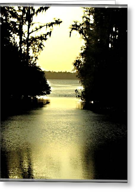 Peaceful Scene Greeting Cards - Tranquil Jacksonville Florida Sunset Greeting Card by Danielle  Parent