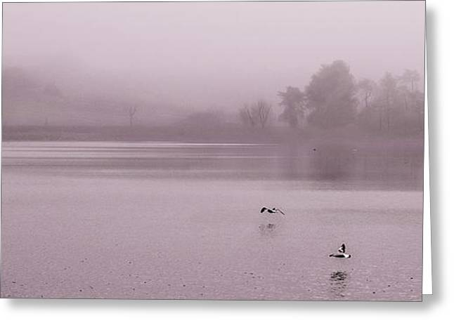 Mystical Landscape Greeting Cards - Tranquil Reservoir Greeting Card by Linsey Williams