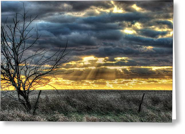 Fenceline Greeting Cards - Tranquil Greeting Card by Thomas Danilovich