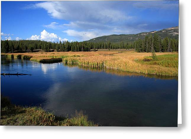 Yellowstone River Greeting Cards - Tranquil Yellowstone   Greeting Card by Aidan Moran