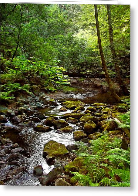 Marin County Greeting Cards - Tranquility Greeting Card by Brian Tada
