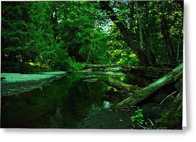 Calm Waters Greeting Cards - Tranquility In The Grove Of The Patriarches Greeting Card by Jeff  Swan