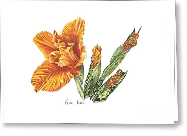 Gladiolas Drawings Greeting Cards - Transformation Greeting Card by Karen Risbeck