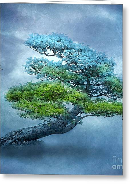 Mystic Sky Art Greeting Cards - Transformation Greeting Card by Viaina