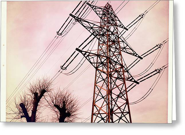 Transmission Greeting Cards - Transmission line with bare trees and red sky Greeting Card by Matthias Hauser