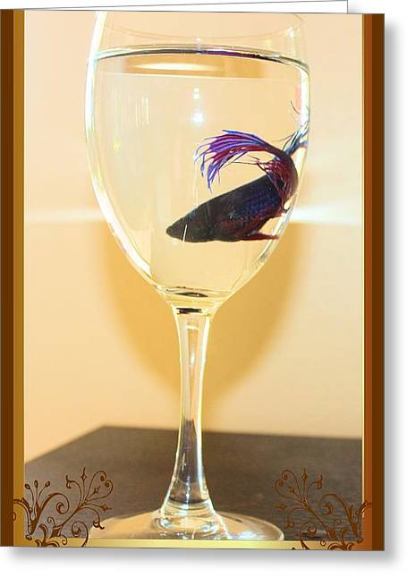 Betta Greeting Cards - Trapped Greeting Card by John Greco