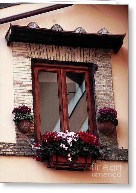 Trastevere Greeting Cards - Trastevere Window Dressing Greeting Card by John Rizzuto
