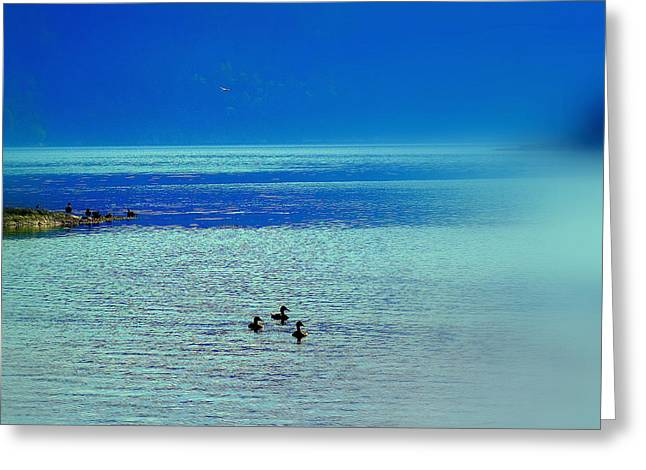 Travelling Into The Blue And Never Returning  Greeting Card by Hilde Widerberg