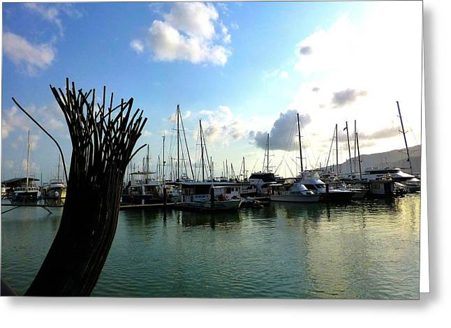 Yacht Greeting Cards - Yachts in Dock  Greeting Card by Girish J