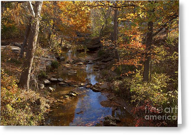 Sulphur Spring Greeting Cards - Traverine Creek in Fall Greeting Card by Iris Greenwell