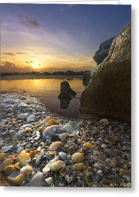 Hobe Sound Greeting Cards - Treasure Cove Greeting Card by Debra and Dave Vanderlaan