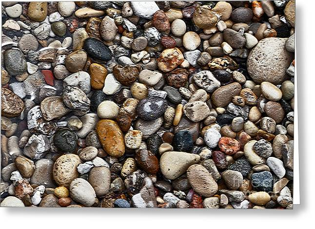 Agate Beach Greeting Cards - Treasured Rocks Greeting Card by Lydia Holly