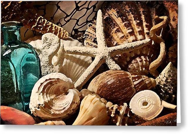 Sea Shell Drawings Greeting Cards - Treasures from the Sea Greeting Card by Cole Black