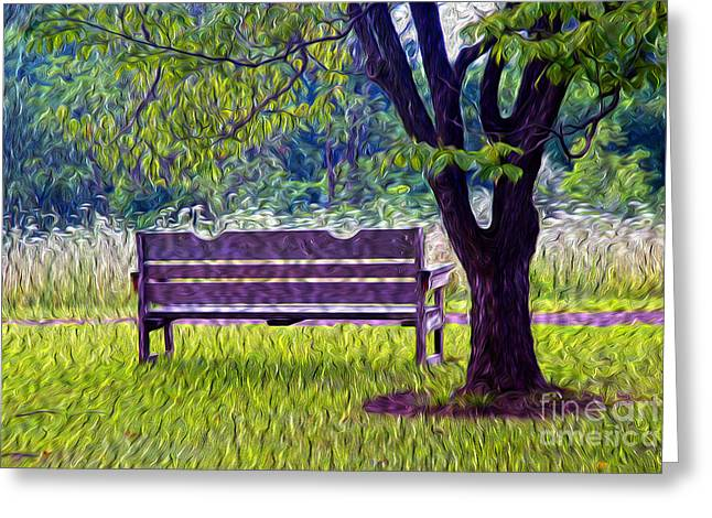 Empty Bench Greeting Cards - Tree and Bench Greeting Card by Paul W Faust -  Impressions of Light