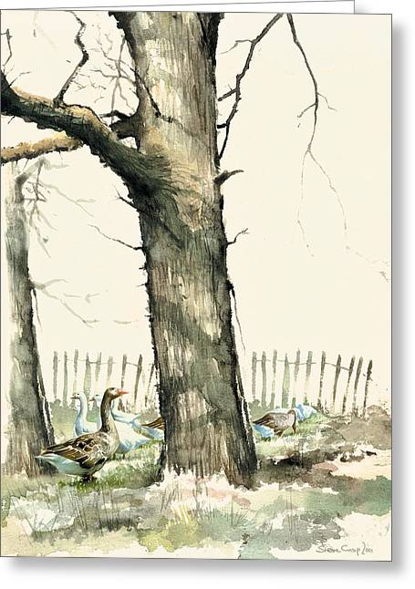 Crisp Greeting Cards - Tree and Geese Greeting Card by Steve Crisp
