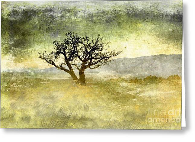Tree At Dusk In Waikoloa 3 Greeting Card by Ellen Cotton