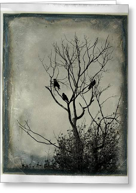 Common Crows Greeting Cards - Tree Built For Three Greeting Card by Gothicolors Donna Snyder