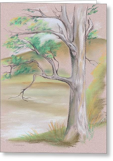 Setting Pastels Greeting Cards - Tree by a Mountain Lake Greeting Card by MM Anderson